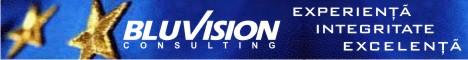 bluvision consulting banner